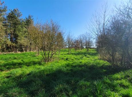 Terrain agricole Joue Sur Erdre