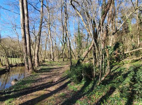 Terrain de Loisirs à 2 kms de l'Etang de Vioreau